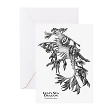 Leafy Sea Dragon Greeting Cards (Pk of 10)