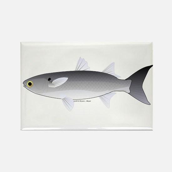 Black Mullet fish Rectangle Magnet