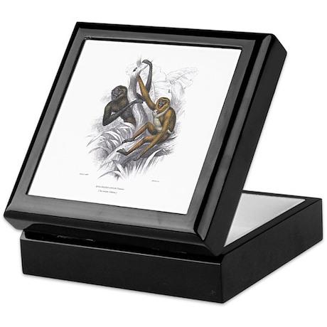Gibbon Ape Monkey Keepsake Box