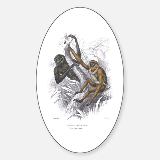 Gibbon Ape Monkey Oval Decal