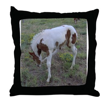 Paints and Pintos Throw Pillow