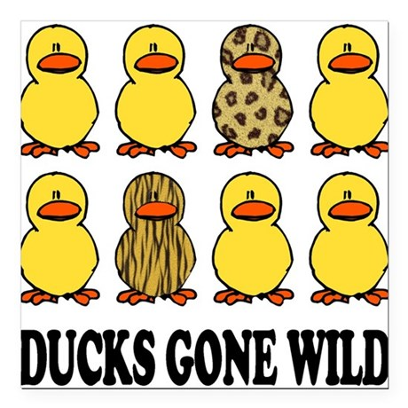 """Ducks Gone Wild.png Square Car Magnet 3"""" x 3"""""""