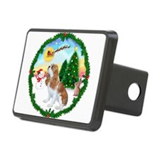 Take Off1/Cavalier F1 Hitch Cover