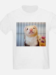 Silly Ferret T-Shirt