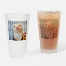 Silly Ferret Drinking Glass