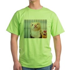 Silly Ferret T-Shirt