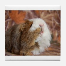 Fall Piggie Love Tile Coaster