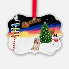 XmasSigns/PBGV #2 Ornament
