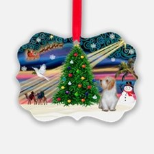 Xmas Magic/PBGV (#3) Ornament