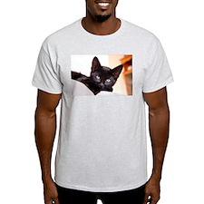 Spook the Kitten T-Shirt