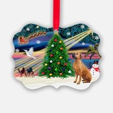 XmasMagic/Rhodesian RB Ornament