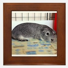Sleeping Guinea Pig Framed Tile