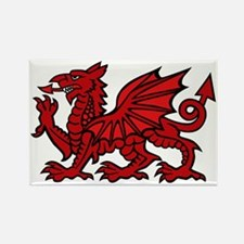 Red Welsh Dragon Rectangle Magnet
