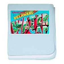 Delaware Water Gap Greetings baby blanket