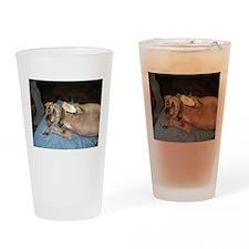 A Hug From Yo Pug(gle) Drinking Glass