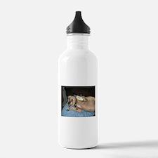 A Hug From Yo Pug(gle) Water Bottle