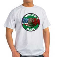 Wales USA Friendship T-Shirt