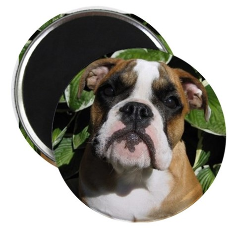 Bulldog Pup Magnet
