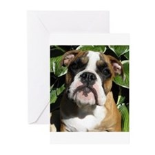 Bulldog Pup Greeting Cards (Pk of 10)
