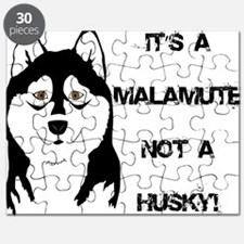 Its a Malamute not a Husky Puzzle