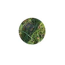 Hidden Turtle Mini Button