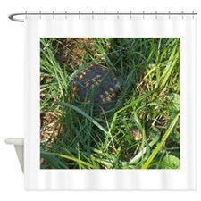 Hidden Turtle Shower Curtain