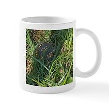 Hidden Turtle Mug