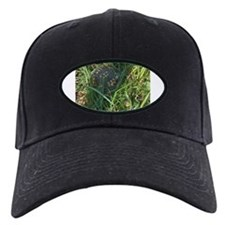 Hidden Turtle Baseball Hat