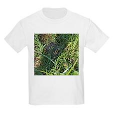 Hidden Turtle T-Shirt