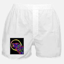 Neon Wolf Boxer Shorts