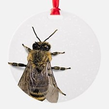 Funny Bees Ornament