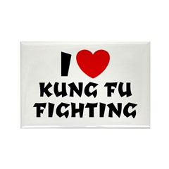 I Love Kung Fu Fighting Rectangle Magnet