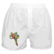 Tropical Macaws Boxer Shorts