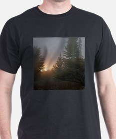 Misty mornings T-Shirt