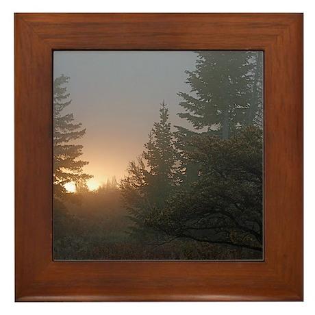 Misty mornings Framed Tile