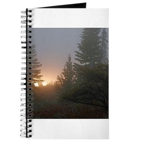Misty mornings Journal