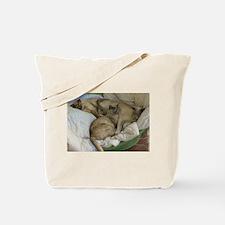 Burmese Cats asleep Tote Bag