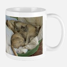 Burmese Cats asleep Mug