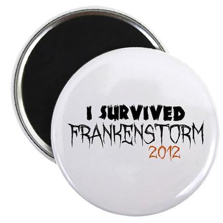 I Survived Frankenstorm Magnet