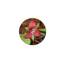 PTXpress Red Trillium Mini Button