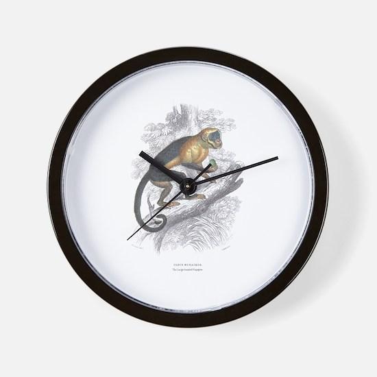 Sapajou Monkey Wall Clock