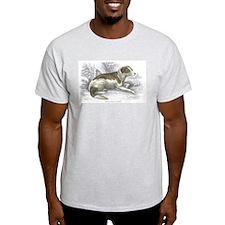 Boar Hound Dog (Front) Ash Grey T-Shirt