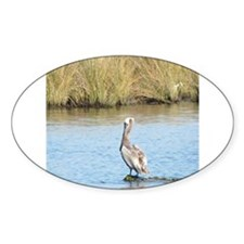 Sitting Pelican Bird Decal