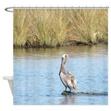 Sitting Pelican Bird Shower Curtain