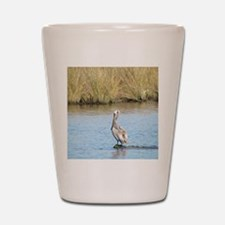 Sitting Pelican Bird Shot Glass