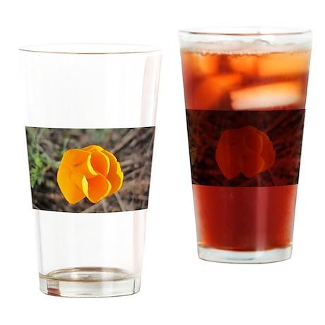 San Luis Obispo Poppy Drinking Glass