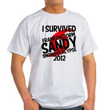 Frankenstorm Sandy Snowpocalypse lol T-Shirt