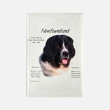 Landseer Newfoundland Rectangle Magnet