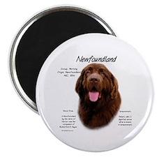 Brown Newfoundland Magnet