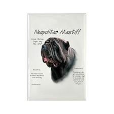 Black Neo Rectangle Magnet